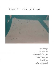 Cover image of Lives in Transition publication